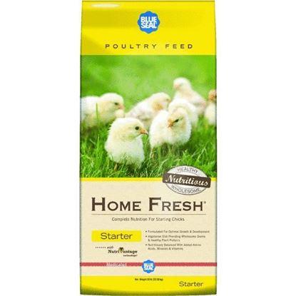 Blue Seal Home Fresh Starter 50#
